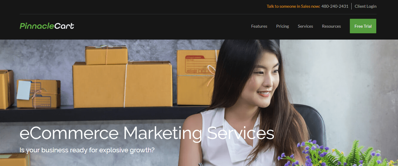 Screenshot of PinnacleCart's marketing services page