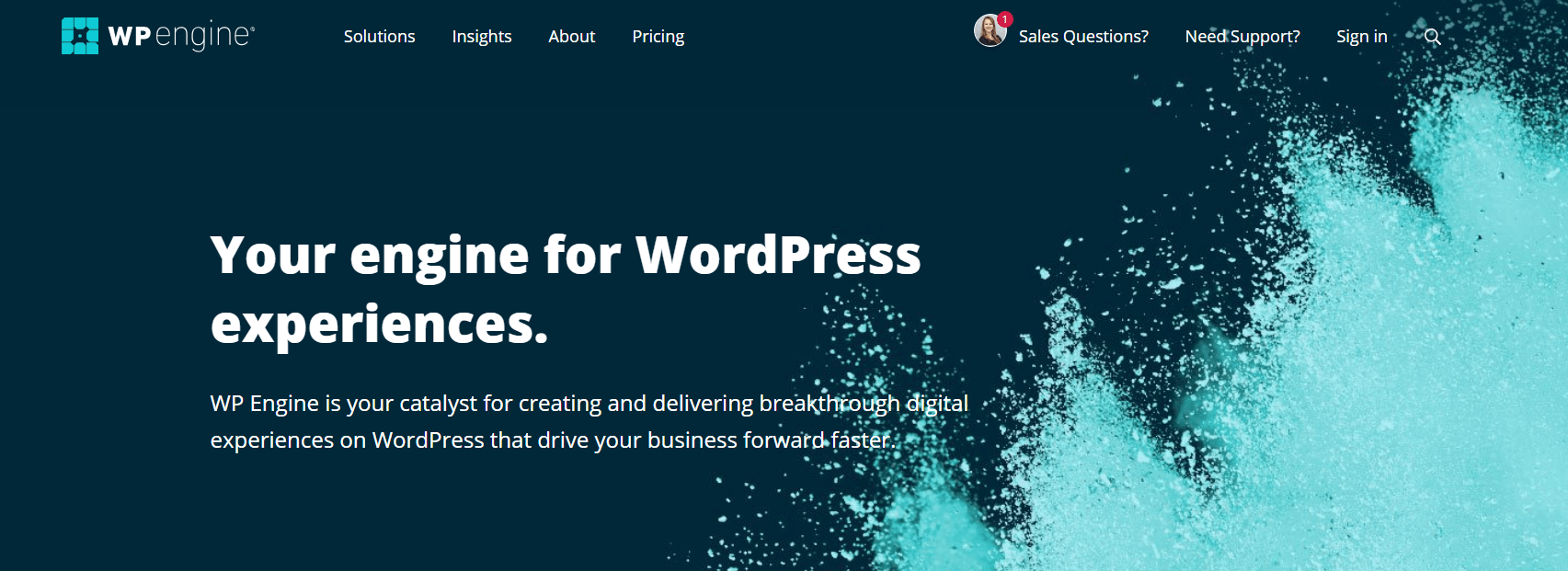 WP Engine WordPress Hosting Customer Helpline