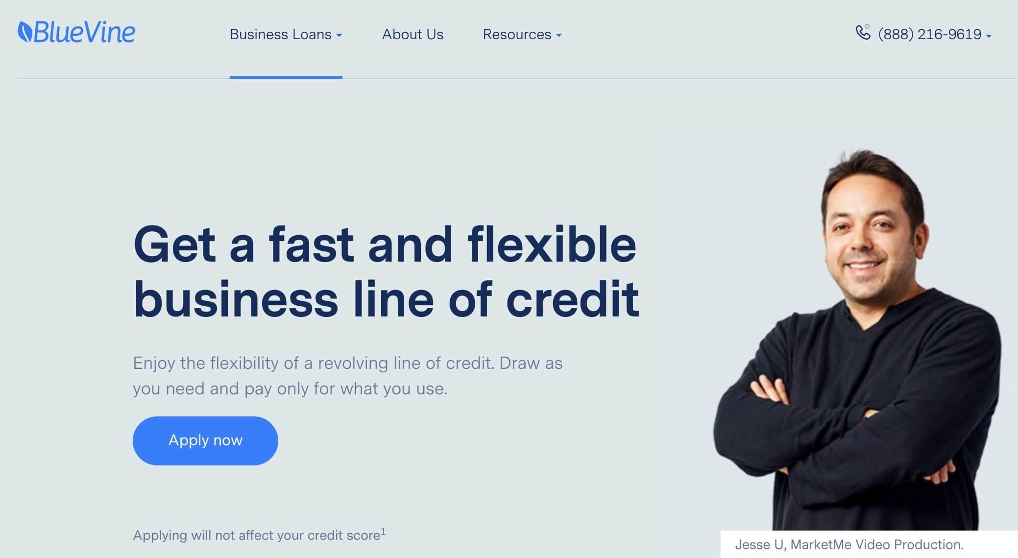 Bluevine home page