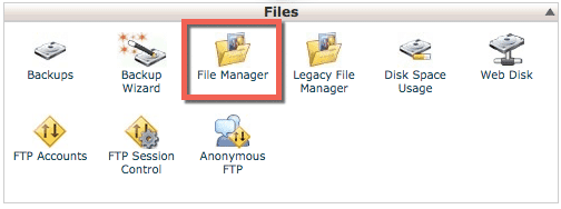 cPanel File Manager icon