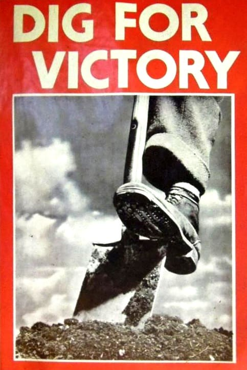 dig for victory poster
