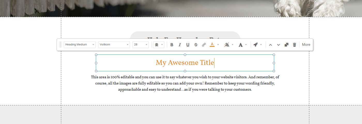 drag-and-drop editor