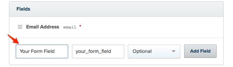 Form fields in Drip