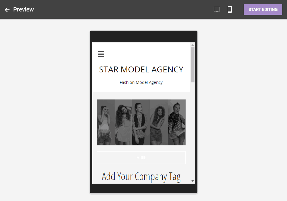mobile preview of theme