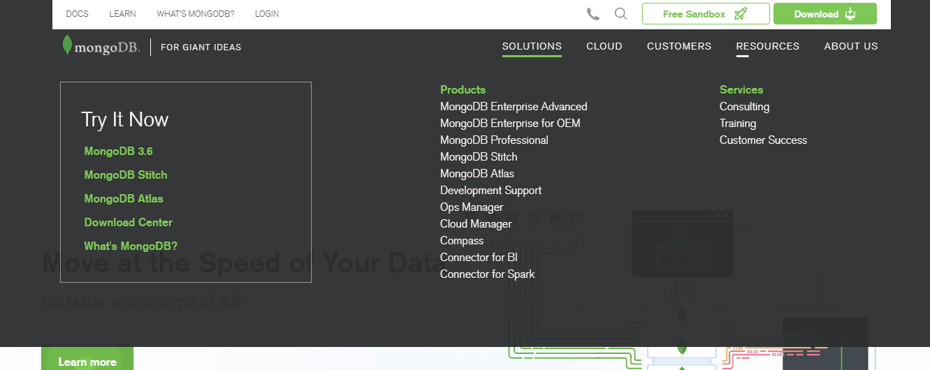 MongoDB solutions screenshot