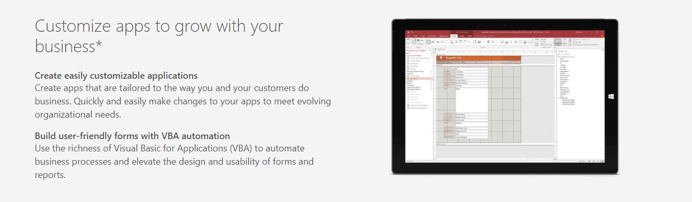MS Access customization screenshot