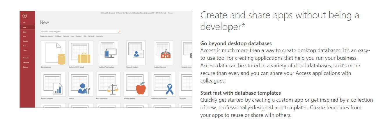 MS Access development screenshot