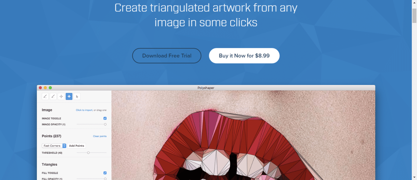 polyshaper triangulation image generator