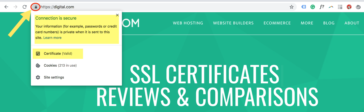 Ssl Certificates Which Is Best For Your Business Digital